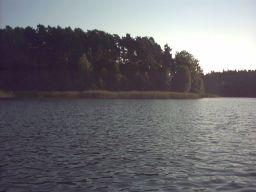 Okonin